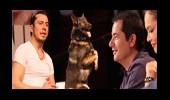 Köpek Tim'in Hırçınlığı Sizi Güldürecek