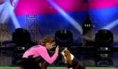 Almira ve Gofret'ten Köpekli Gösteri
