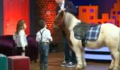 Stüdyoda at sürprizi! Alp Kırşan çocukları şaşkına çevirdi...
