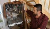 Onur Büyüktopçu'nun papağanla ilginç muhabbeti!