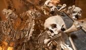 İnşasında insan kemikleri bulunan yapılar