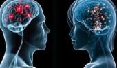 Kadın ve erkek beyni neden birbirinden farklı çalışıyor?