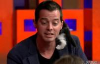 Yavru kedi ilgi odağı oldu!