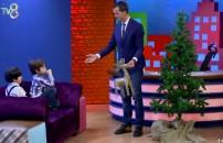 Yılbaşı ağacını böyle süslediler!