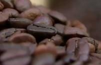 Kahve kültürünün tarihi