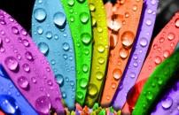 Renkler neyi anlatır? İşte renklerin psikolojisi...