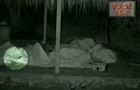 TV'de YOK | Survivor gönüllüler takımı barakasında davetsiz misafir! Kimse farkına varmadı
