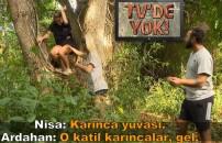 TV'de YOK | Ağaca çıkan Survivor Nisa, kırmızı karıncaların arasında kalınca panikle yere atladı!