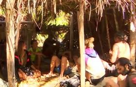 Ünlüler adası darmadağın oldu! Coconut krize yol açtı