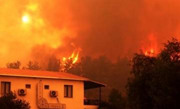 Muğla'da yanan alan 40 bin hektarı buldu!
