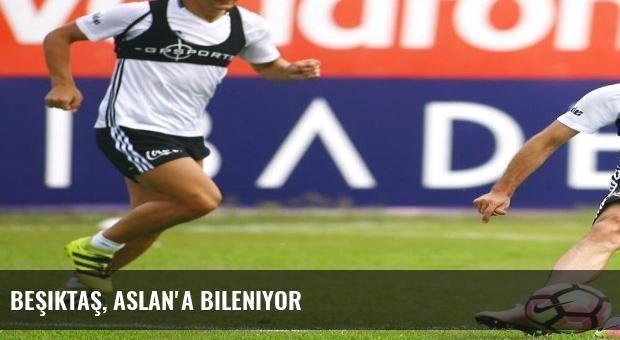 Beşiktaş, Aslan'a bileniyor