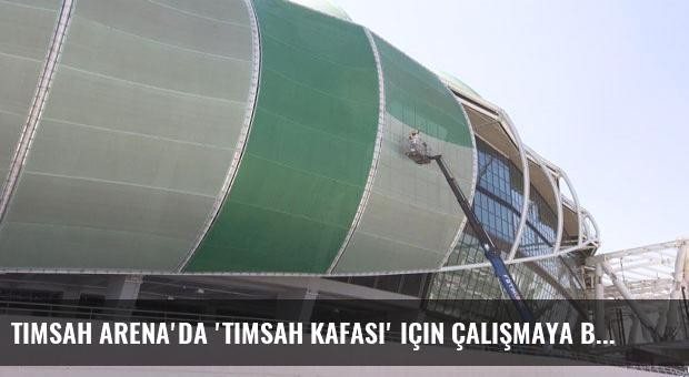 Timsah Arena'da 'timsah kafası' için çalışmaya başlandı