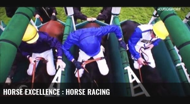 Horse Excellence : Horse Racing