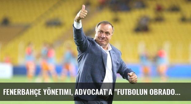 Fenerbahçe Yönetimi, Advocaat'a 'Futbolun Obradovic'i' Benzetmesini Yaptı