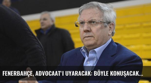Fenerbahçe, Advocaat'ı Uyaracak: Böyle Konuşacaksan Çek Git