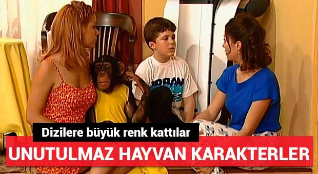 Türk dizilerinin unutulmaz hayvan karakterleri