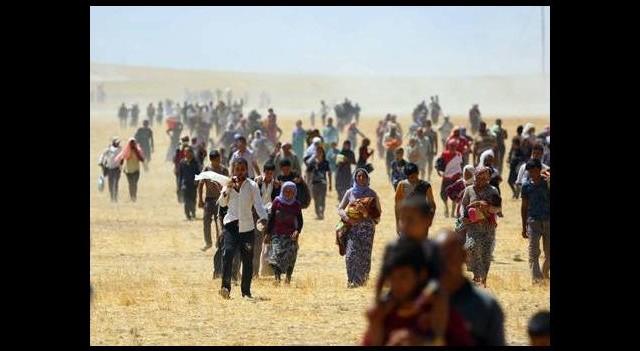 Mahsur kalan binlerce Ezidi kurtarıldı