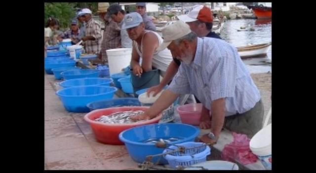 Aziz Yıldırım'ın belirttiği balıkçılar konuştu