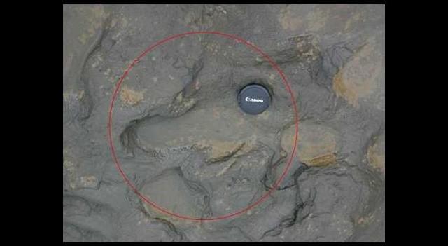 800 bin yaşında ayak izleri bulundu!