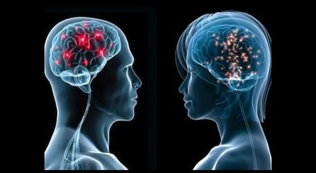 İşte Kadın İle Erkek Arasındaki Fark