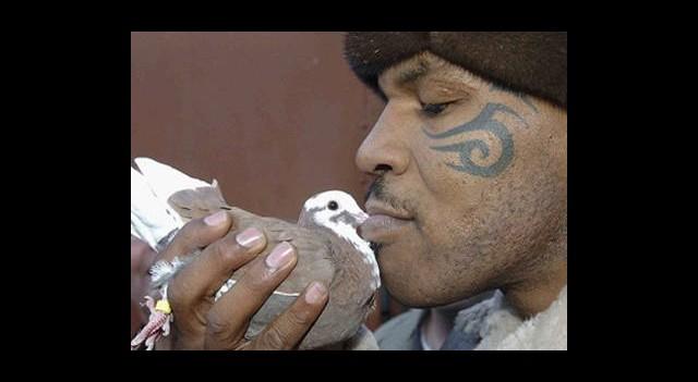 Sevgilisi Mike Tyson'ın Kuşunu Yedi!