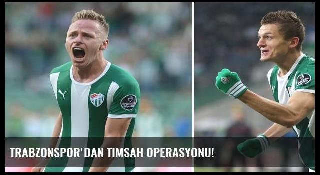 Trabzonspor'dan Timsah operasyonu!