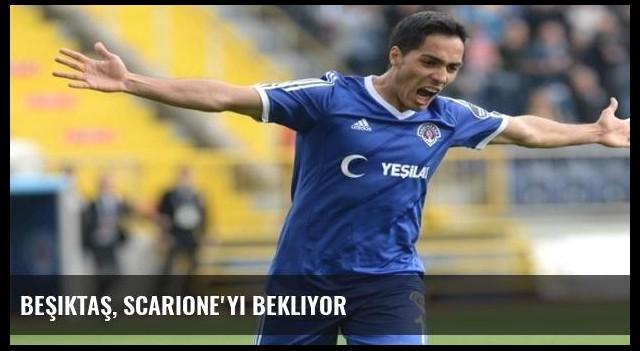 Beşiktaş, Scarione'yi bekliyor