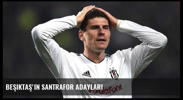 Beşiktaş'ın santrafor adayları
