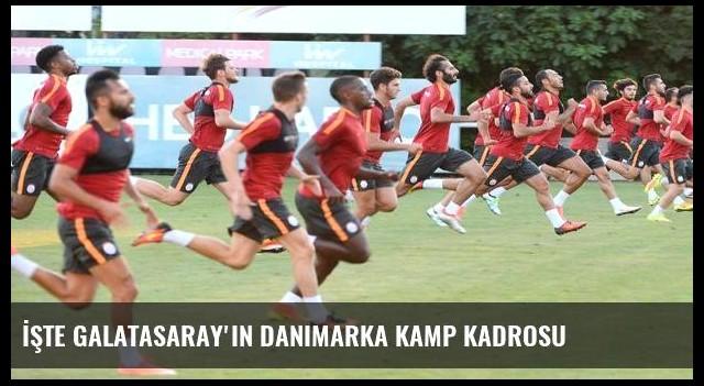 İşte Galatasaray'ın Danimarka kamp kadrosu