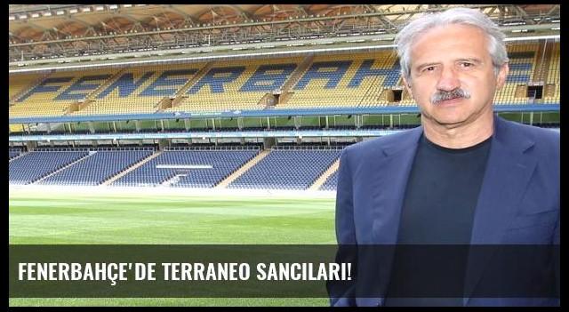 Fenerbahçe'de Terraneo sancıları!
