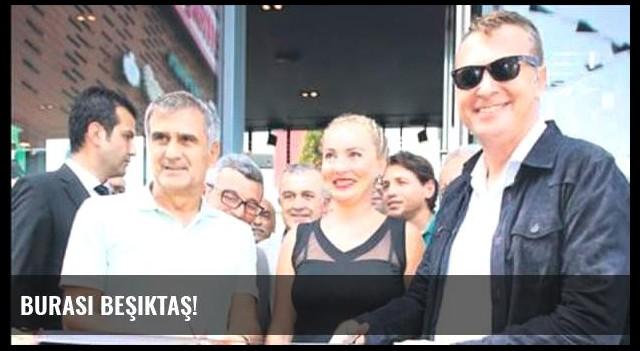 Burası Beşiktaş!