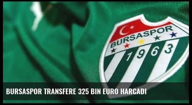 Bursaspor transfere 325 bin Euro harcadı