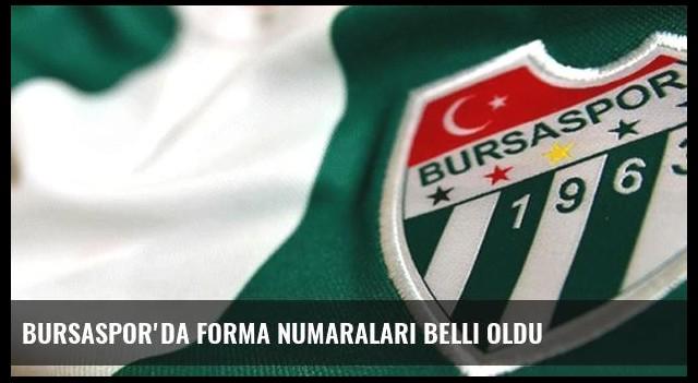Bursaspor'da forma numaraları belli oldu