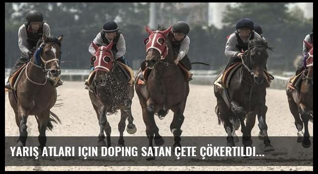 Yarış atları için doping satan çete çökertildi