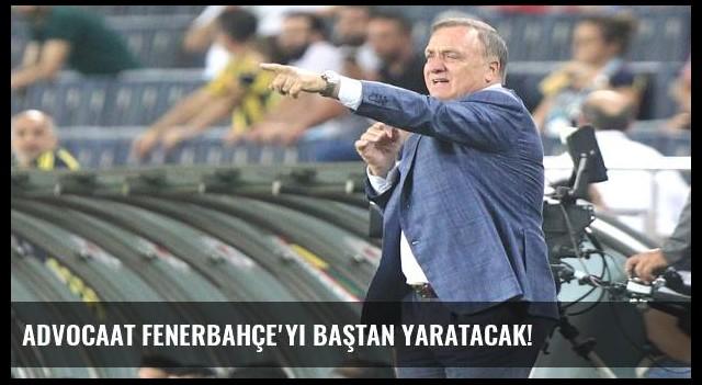 Advocaat Fenerbahçe'yi baştan yaratacak!