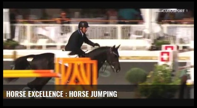 Horse Excellence : Horse Jumping