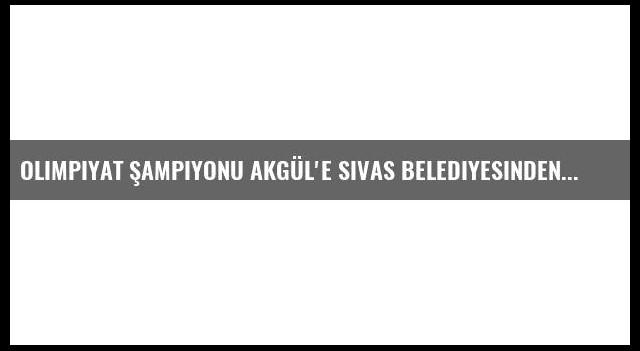 Olimpiyat Şampiyonu Akgül'e Sivas Belediyesinden Arsa