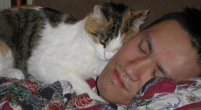 İlk defa evde kedi besleyenlere öneriler