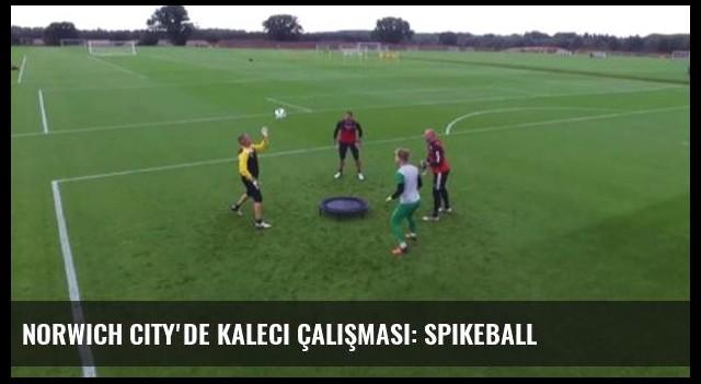Norwich City'de Kaleci Çalışması: Spikeball