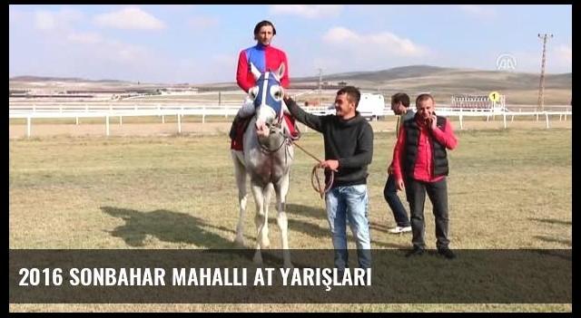 2016 Sonbahar Mahalli At Yarışları