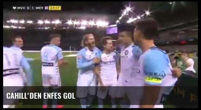 Cahill'den Enfes Gol