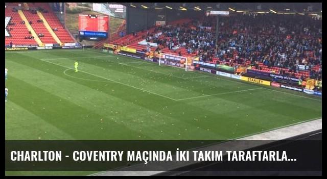 Charlton - Coventry Maçında İki Takım Taraftarları Sahaya Domuz Oyuncağı Attı