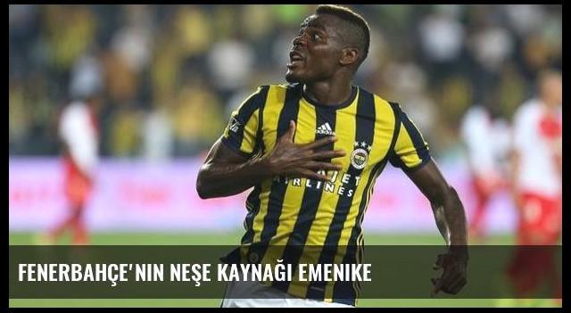 Fenerbahçe'nin neşe kaynağı Emenike