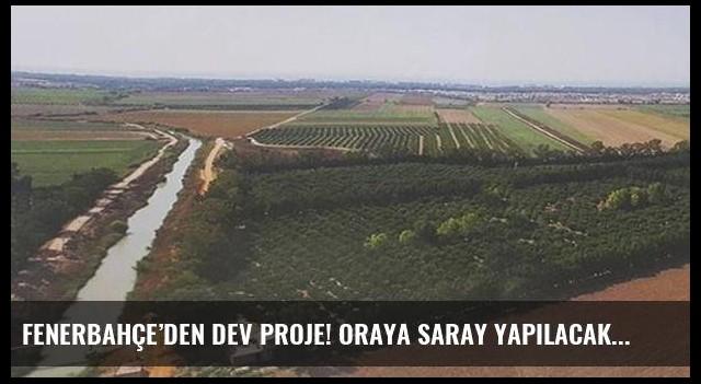 Fenerbahçe'den dev proje! Oraya saray yapılacak