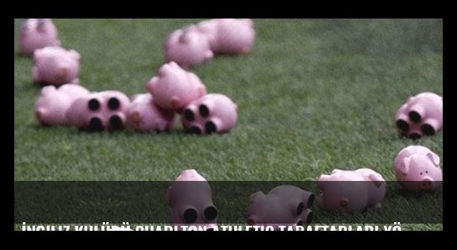 İngiliz kulübü Charlton Athletic taraftarları yönetimi domuz ile protesto etti