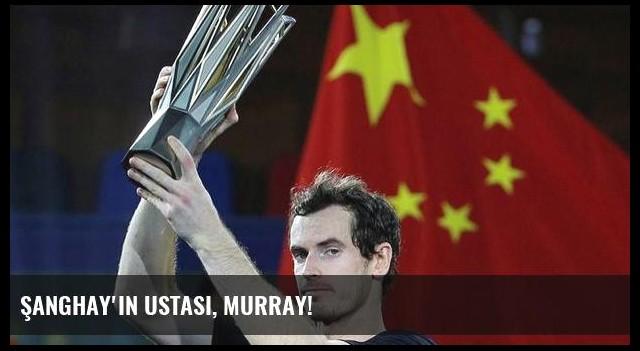 Şanghay'ın ustası, Murray!