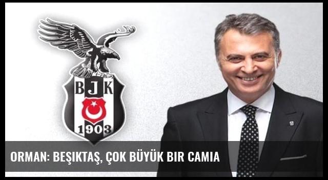 Orman: Beşiktaş, çok büyük bir camia