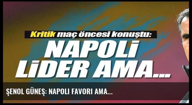 Şenol Güneş: Napoli favori ama...