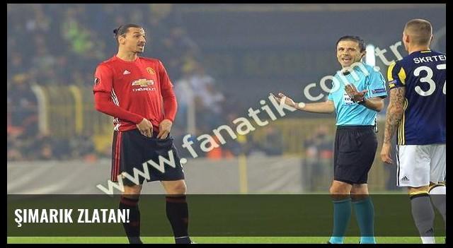 Şimarık Zlatan!