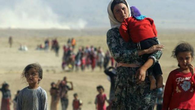 IŞİD'in elinden kaçan Ezidi kadınlar konuştu